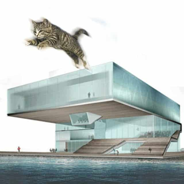Institute of Catemporary Art - Diller, Scofidio and Renfro with Cats