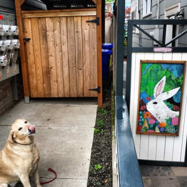 Labrador next to a painted rabbit