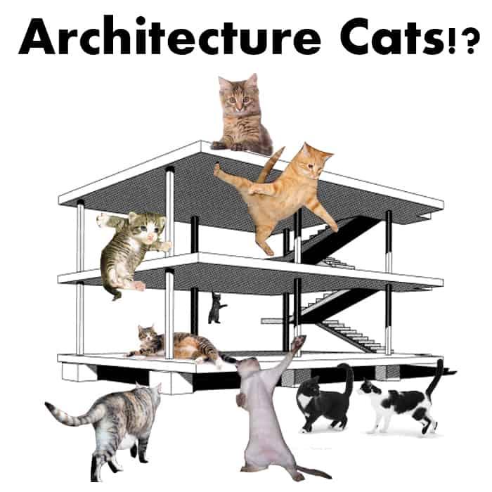Architecture Cats