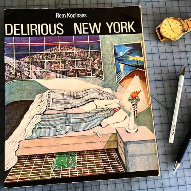 "A copy of ""Delirious New York"""