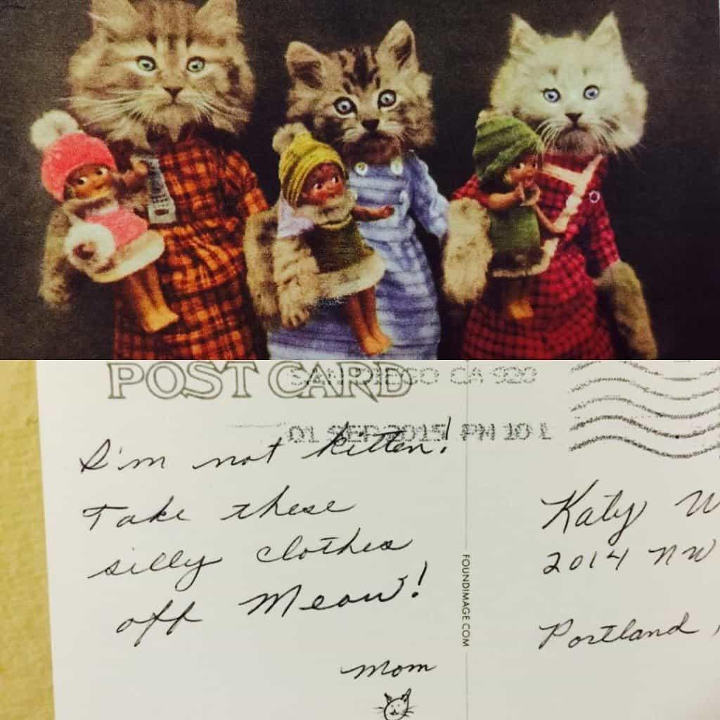 Funny postcard with pun about cats