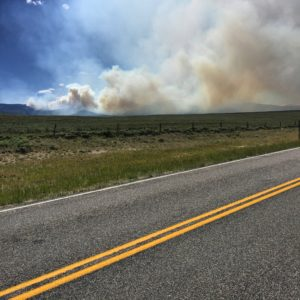 Rode past a nasty forest fire today at the Colorado/Wyoming border. I pray it gets resolved quickly and all beings are safe. 🚴🌲🌲🔥😱🐭🐹🐰🐻🐷🐮🐔🐥🐺🐴🐝 #Transam2016 #Biketouring #Bicycletour #CycleTouring #AdventureByBike #RideYourBike #GetOutAndRide #worldbybike #BikeTour #bikenation #bikewander #bikesofinstagram #Bikepacking #AdventureCycling #DudeRobot
