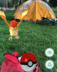 AUSTIN, Watch out! There's a Pokemon in front of your tent!!!! #Transam2016 #Biketouring #Bicycletour #CycleTouring #AdventureByBike #RideYourBike #GetOutAndRide #worldbybike #BikeTour #bikenation #bikewander #bikesofinstagram #Bikepacking #AdventureCycling #DudeRobot #pokemongo