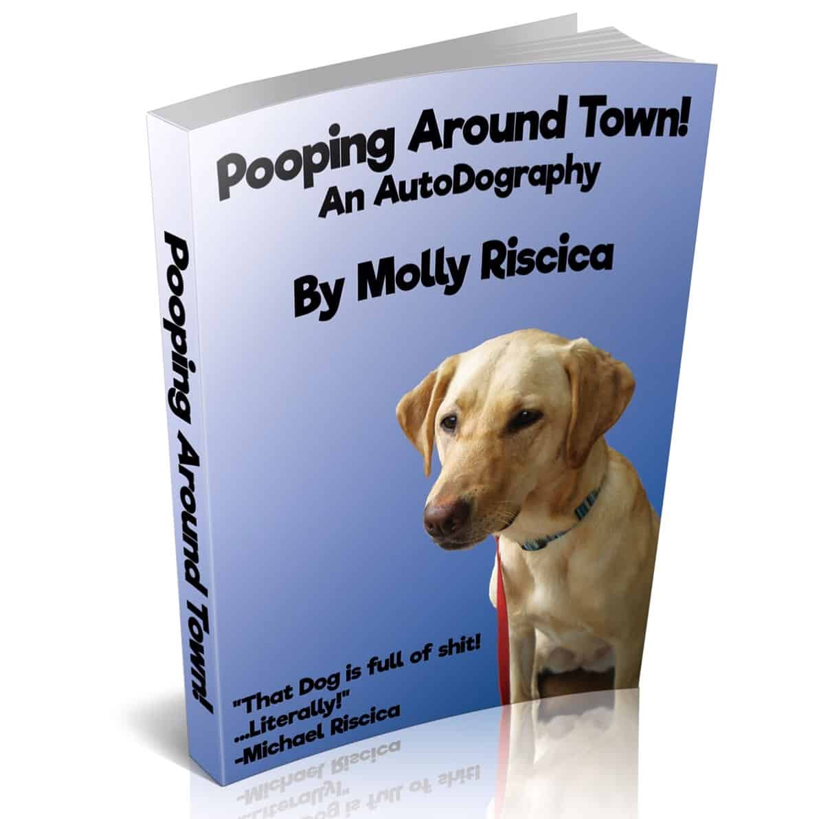 Congrats to Molly Riscica for finishing her first book!!! #labsofinstagram #mollyriscica #labrador #bestseller #yellowlaboftheday #entrepreneur #autobiography #byadog #downdog #updog #gooddog #tougueouttuesday #caturday #portlanddogs #firstbook