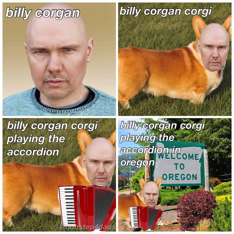 I love Billy Corgan, but Billy Corgan Corgi is my best friend!