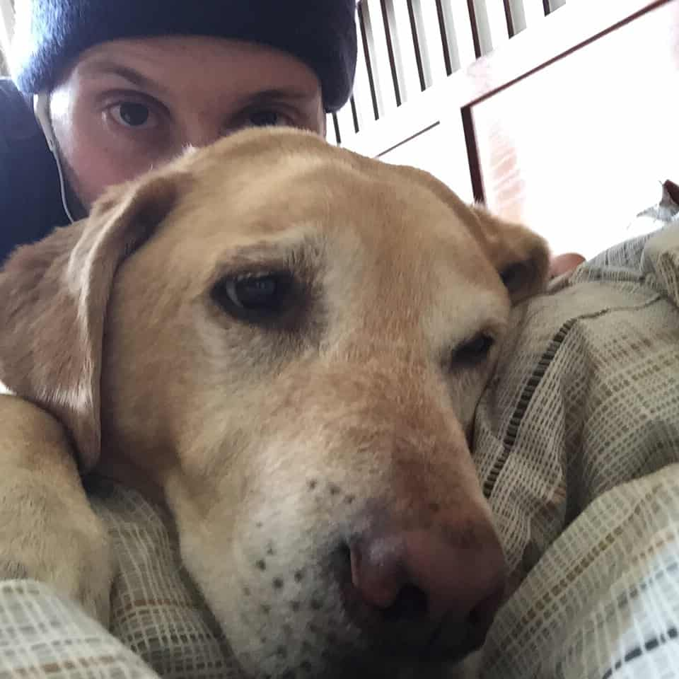 Labrador selfie #labsofinstagram #labs #labsofportland #labstagram #labradorable #labradorretriever #mollythedog #labradors #labradoroftheday #retrievers #retrieversgram #talesoflabs #worldoflabs #labradoroftheday #thelablove_feature #justlabradors #labsofinsta #labs_of_insta #labradors4life #justlabradors #fab_labs_ #labslife #labradorsofinstagram