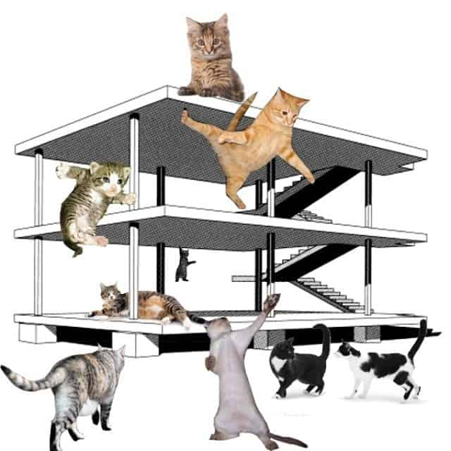 Picture with cats climbing a 2D building