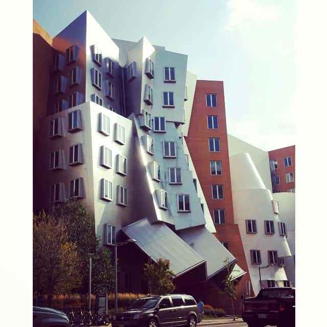 Gehry at MIT