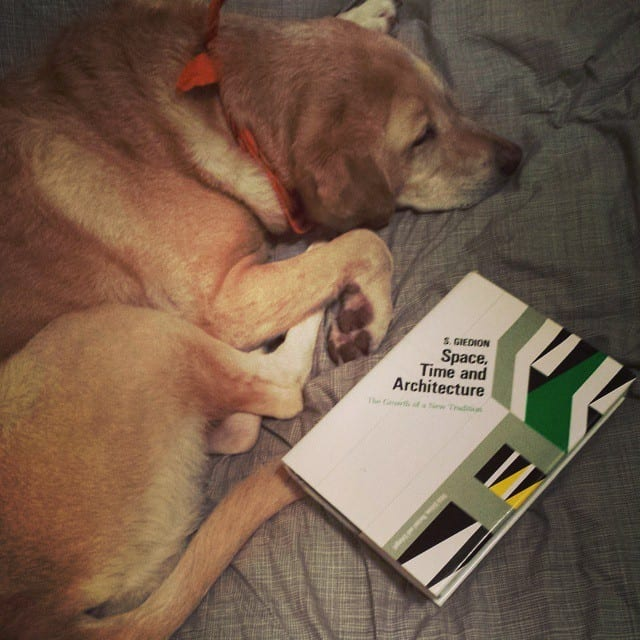 Labrador sleeping with space, time and architecture by S. Giedion