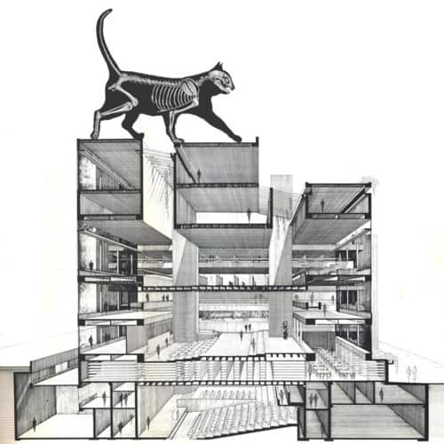 Paul Rudolph's brutal Cat and Architecture Building at Yale